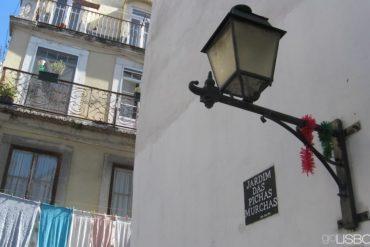 Jardim das Pichas Murchas, Lisbon