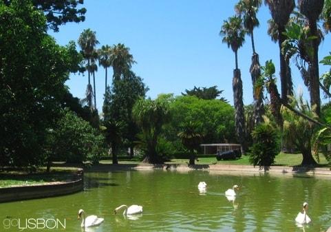 Tropical Garden, Lisbon