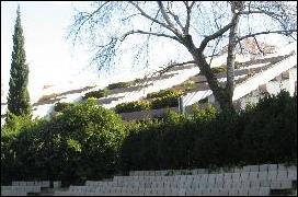 Gulbenkian Modern Art Center's garden's amphitheatre