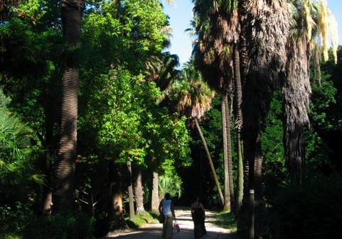 Jardim Botanico, Lisbon