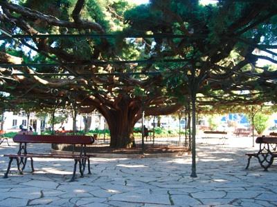 Principe Real garden