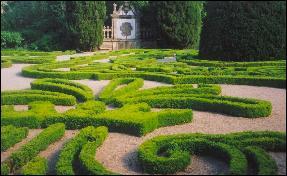 Mateus Palace Gardens